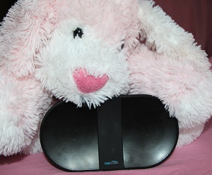 The CoolStream Speaker and a cute plush dog is the perfect Valentine's Day gift.