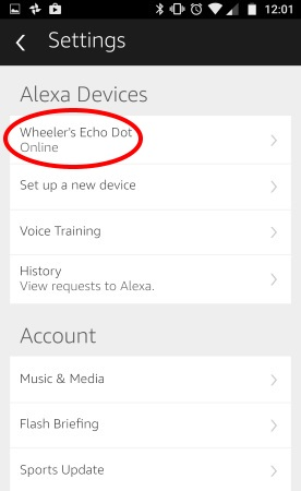 Alexa Settings Menu