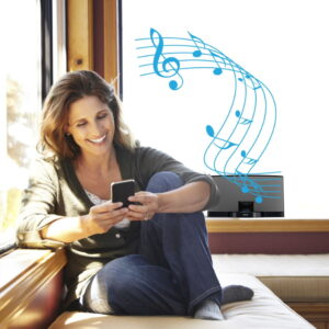 Enjoy streaming music from your favorite iPod dock again with the CoolStream Duo.